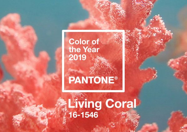 pantone-color-of-the-year-2019-living-coral-banner